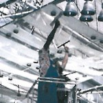 Reinigen von Decken, Leuchten und Metallverstrebungen